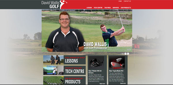david wallis website